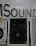 msound-6w-wv2-1