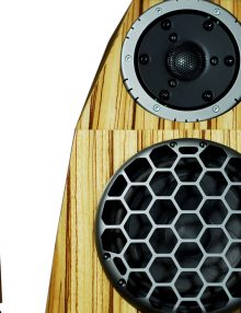 divini-audio-rasa