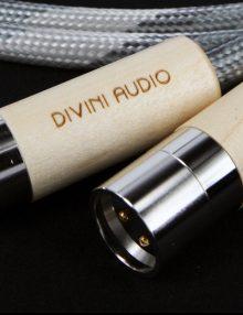 divini-audio-x-s12-xlr